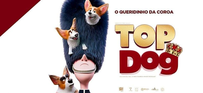 Corgi: Top Dog